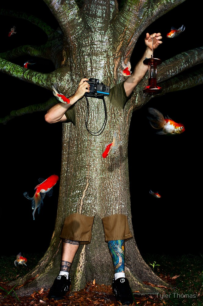 Fish, Tree & Me by Tyler Thomas