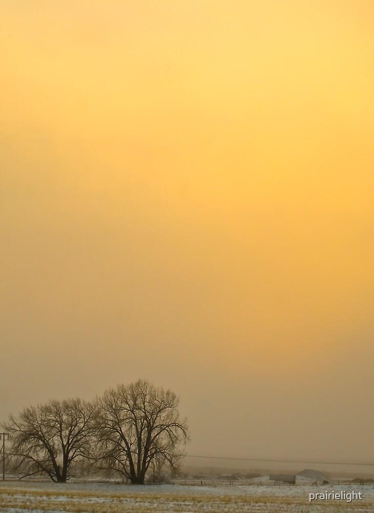 Blizzard Sunset by prairielight