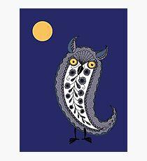 Paisley Owl Photographic Print