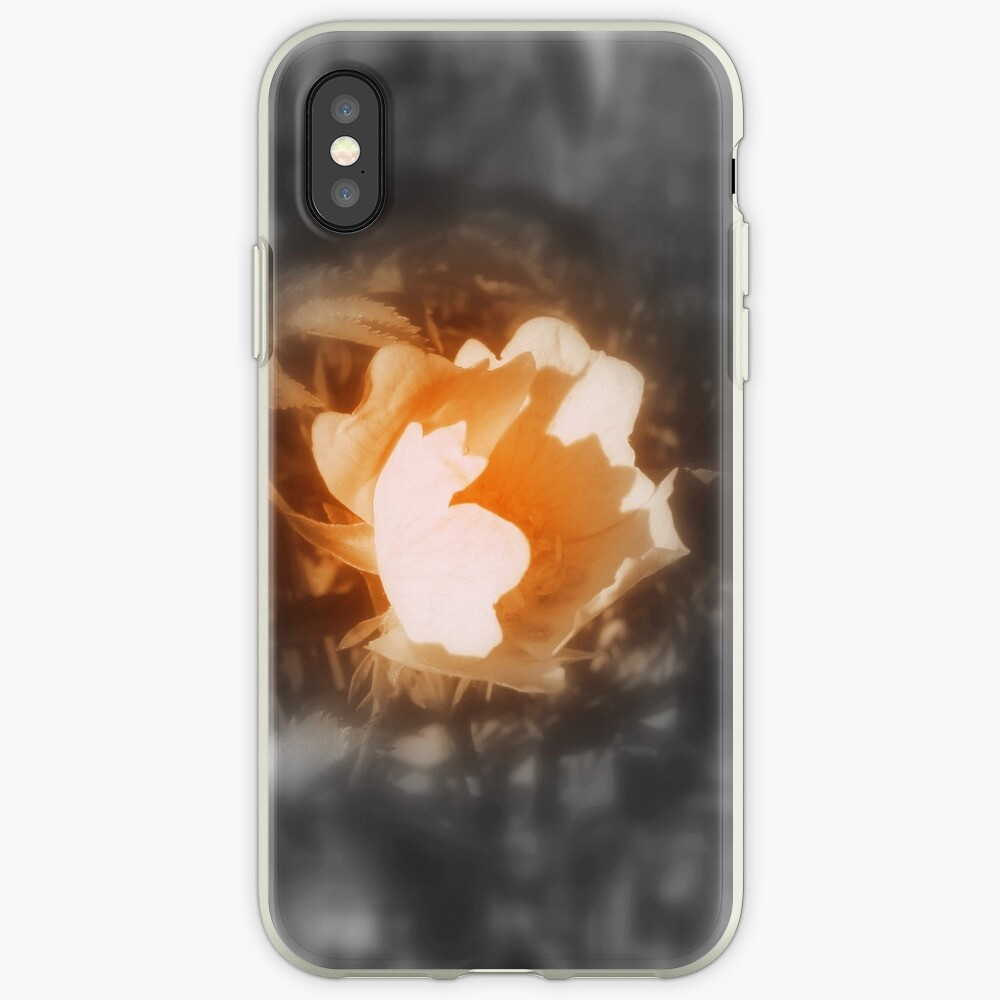 old-fashioned roses by Fox Creek & Columbia River 10 iPhone Case & Cover