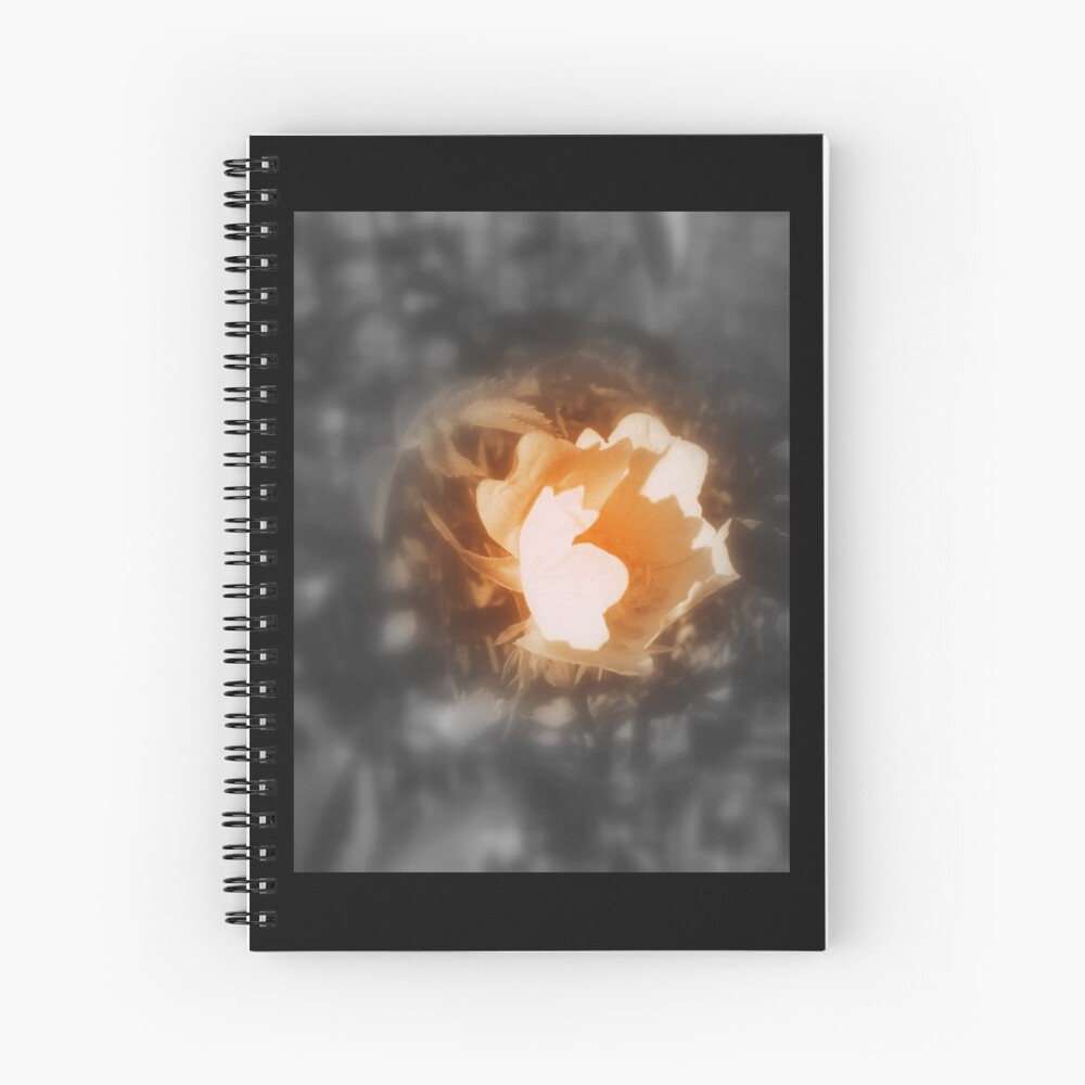 old-fashioned roses by Fox Creek & Columbia River 10 Spiral Notebook