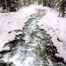 Running deep through the snow by Phil Scott