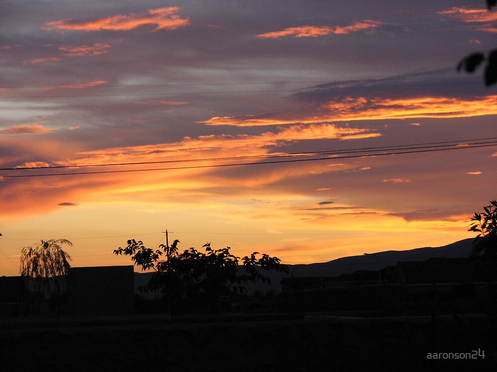 New Mexico Sunset by aaronson24
