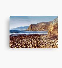 The Beach at Cambria Metal Print