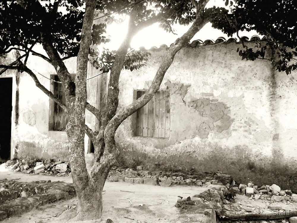 Monchique Courtyard by Sherif