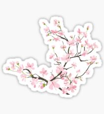 cherry blossom flowers Sticker