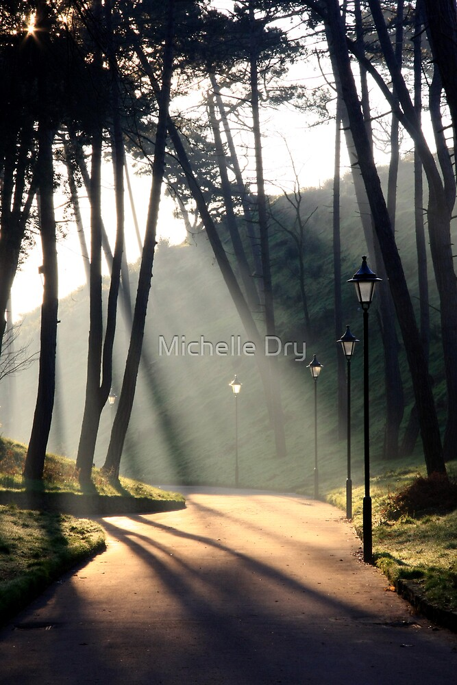 The path by Michelle Dry