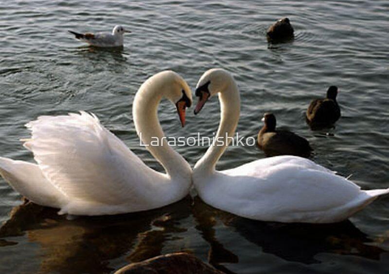 Happy Valentine by Larasolnishko