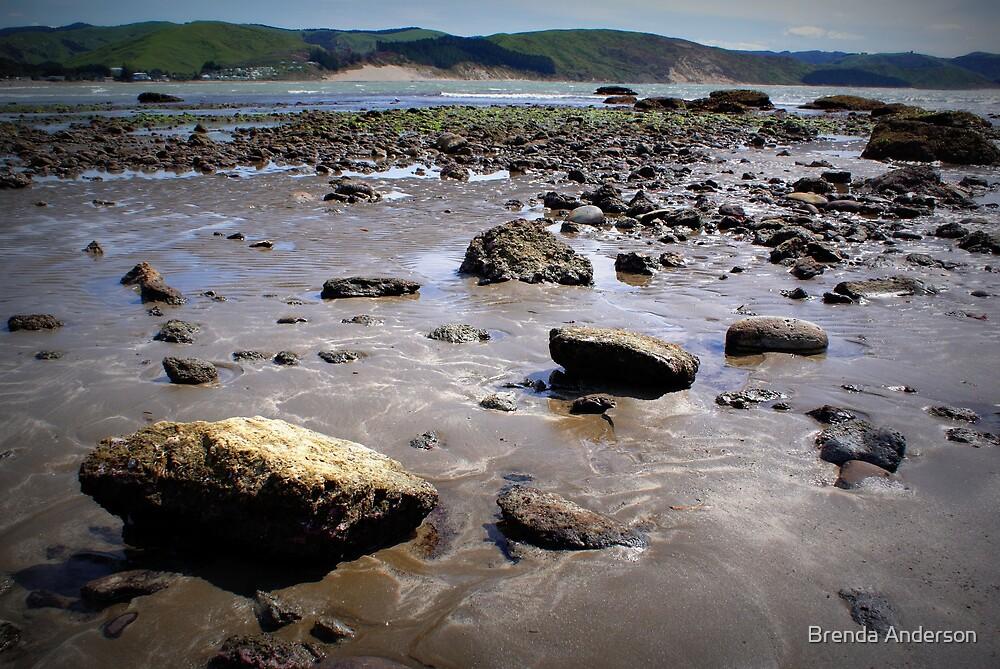 low tide by Brenda Anderson