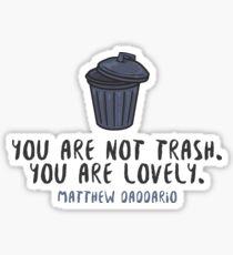 You're Not Trash - Matt Daddario Sticker
