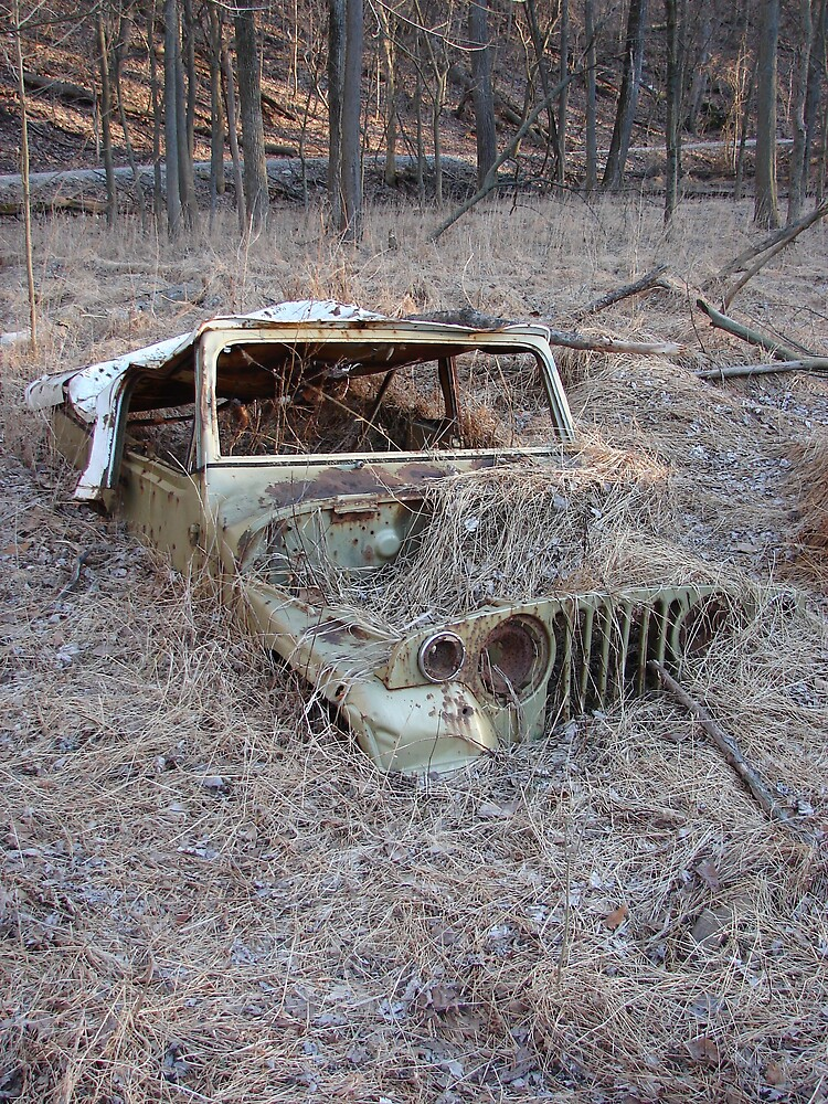 Jeep Graveyard by inventor