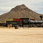 Old West Train and Stage Coach by Larry Costales