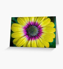 Abstract Daisy Greeting Card