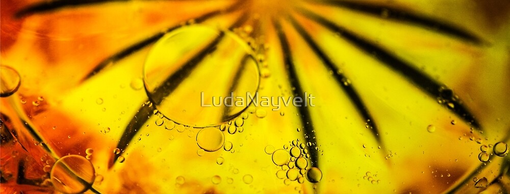 YELLOW BUBBLES ABSTRACT  by LudaNayvelt