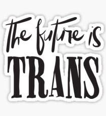 THE FUTURE is TRANS Sticker