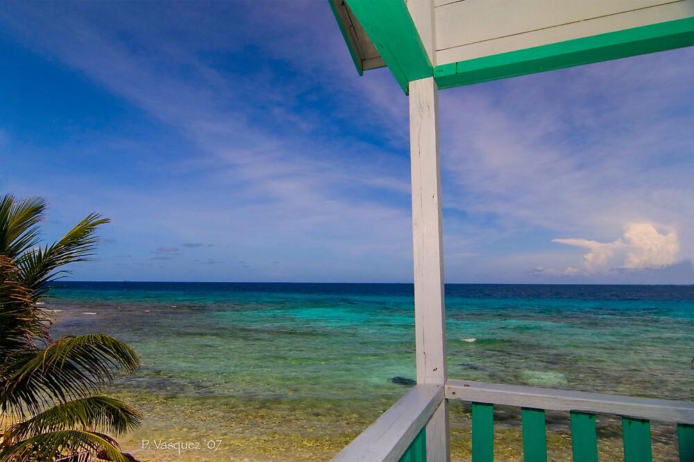 Laughing Bird Caye - Belize by PamelaDuncanVas