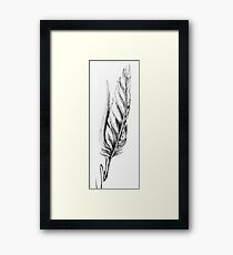 Quills Framed Print