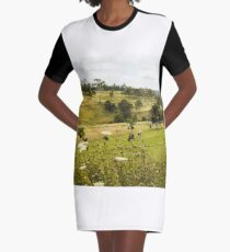 Stratford country vista Graphic T-Shirt Dress