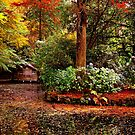 Boat House On Ornamental Lake in Autumn by Ronald Rockman