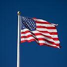 USA Flag by Sam Frysteen