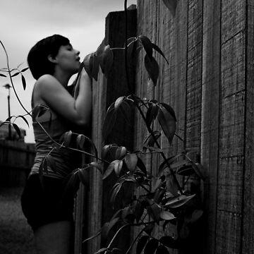 Vine by RyanHamilton