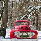 Christmas Joy Ride by Maria Dryfhout