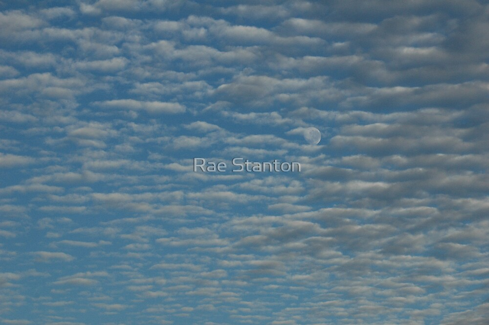 moonclouds by Rae Stanton