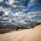 Dune and beyond by Stephanie Johnson