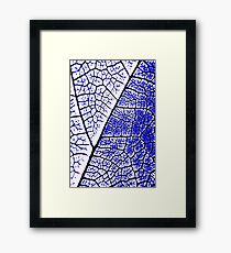Leaf Abstract Framed Print
