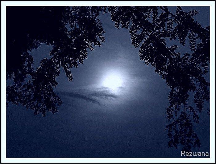 Dreamy blue by Rezwana