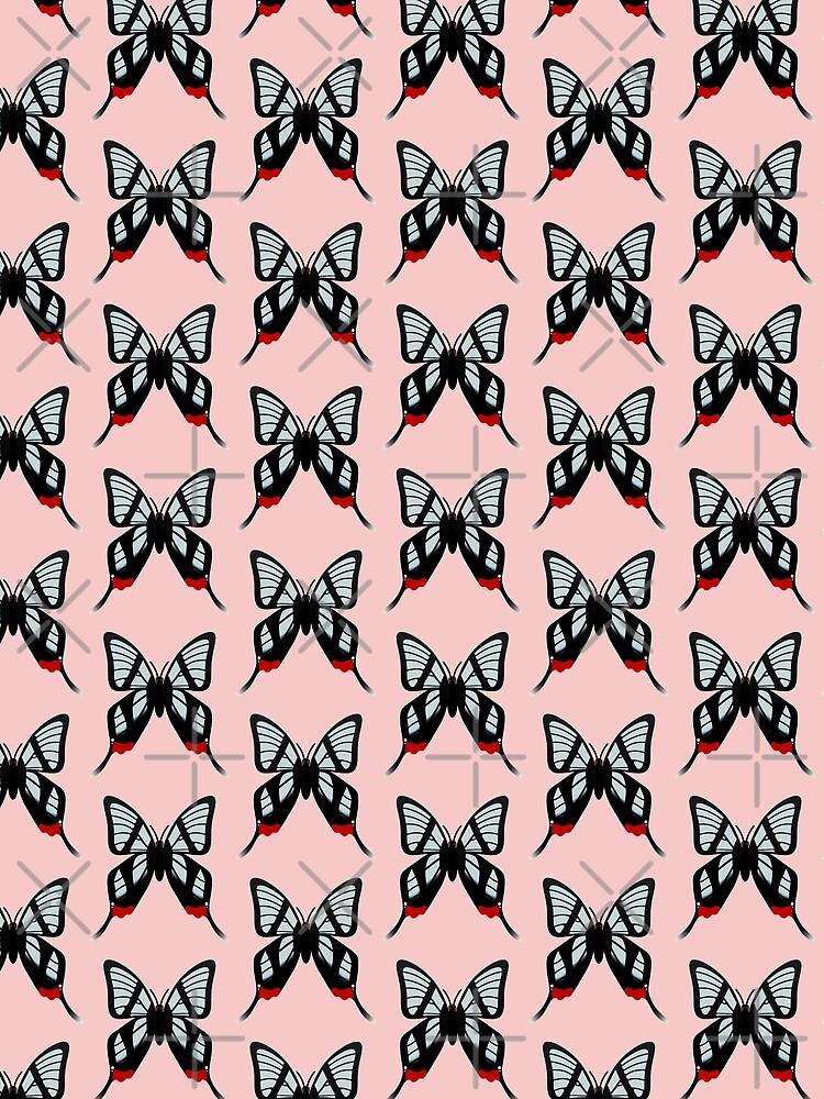 Glasswing Swallowtail Butterfly by Elisecv