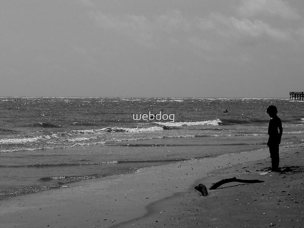 SON OF THE BEACH by webdog