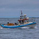 6905 Steini GK-34 by Photos by Ragnarsson