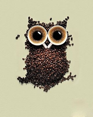the coffee owl by joannebaby