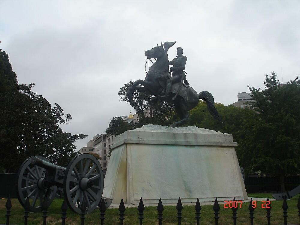 Statue in Washington D.C. by reddy