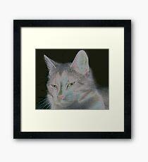 Feline Mom Framed Print