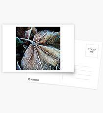 Crystals on a leaf Postcards