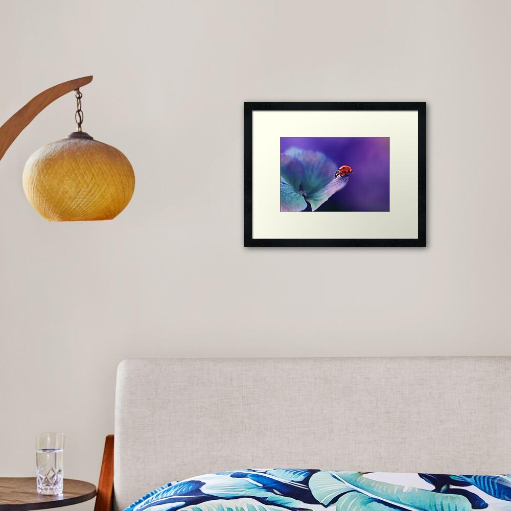 Ladybird....... Framed Art Print