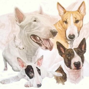 Bull Terrier Medley by BarbBarcikKeith