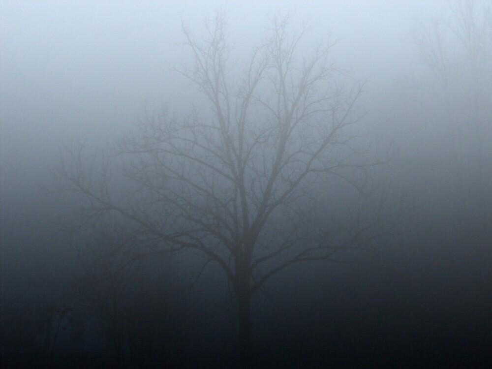 foggy tree by rebecca smith