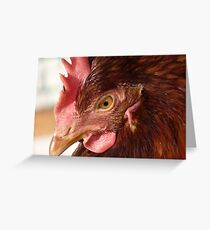 Deep in thought! - Red Hen - NZ Southland Greeting Card