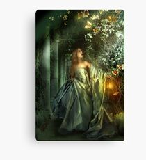 Once upon a moonbeam Canvas Print