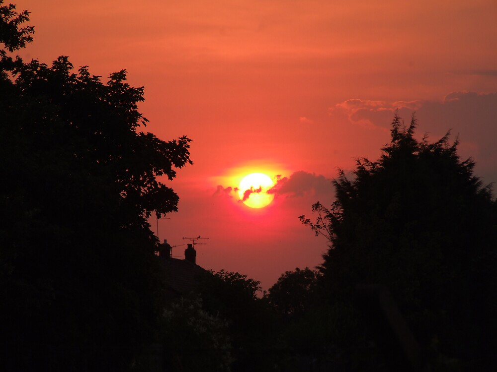sunset out of my window by Michael Casselden