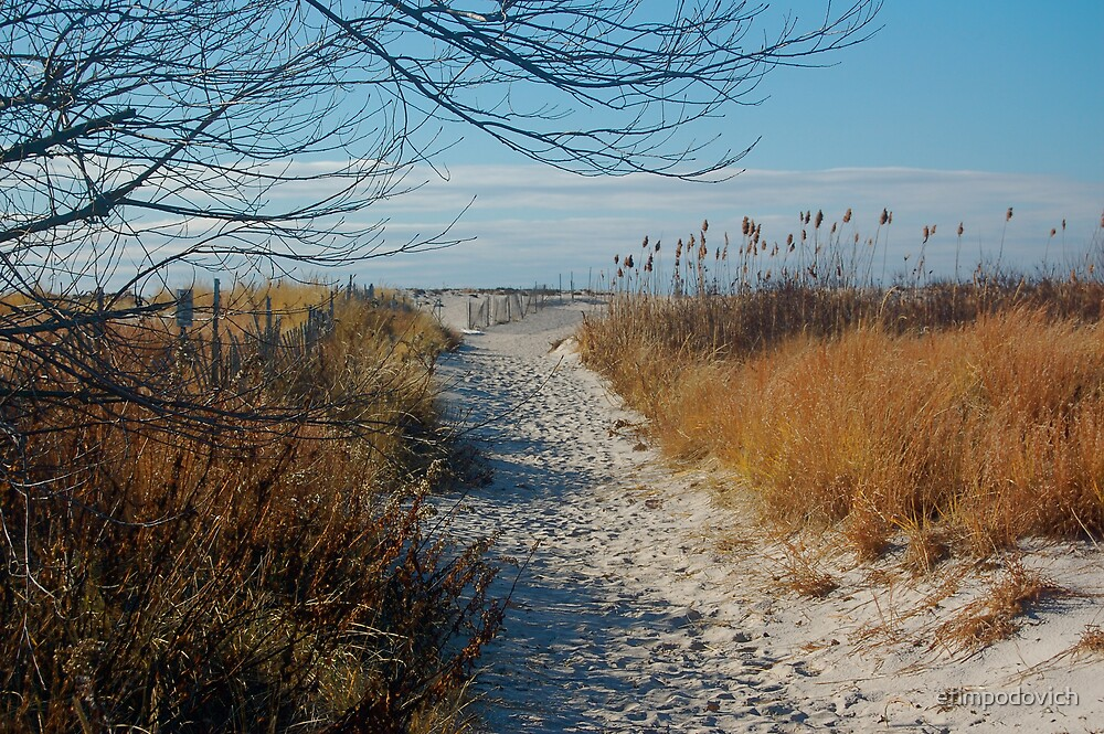 Walk path in the sand by efimpodovich
