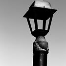 Old Dock Light 5 BW by marybedy