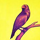 Royal Raven by Tyler Joy