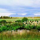Dusk National Park  NZ  by kevin smith  skystudiohawaii