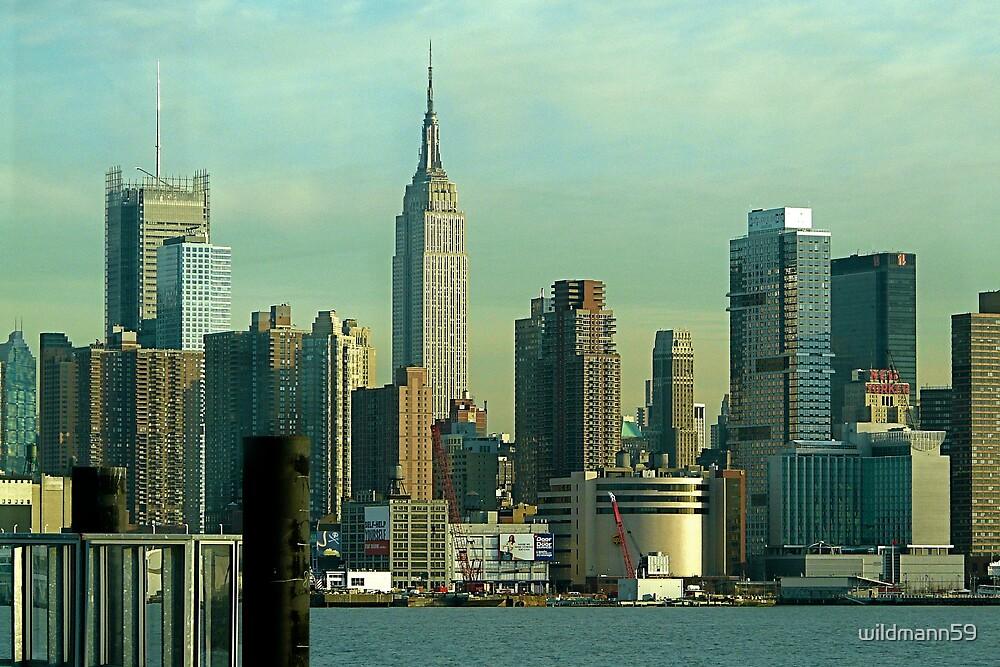 The Classic Skyline , NYC .... by wildmann59