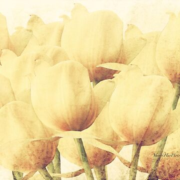 Bouquet of Tulips by Photograph2u