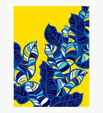 Pop foliage on Yellow Photographic Print